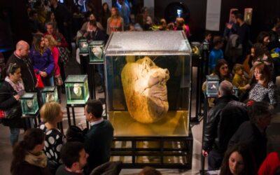 Viaje al cuerpo humano… desde Granada